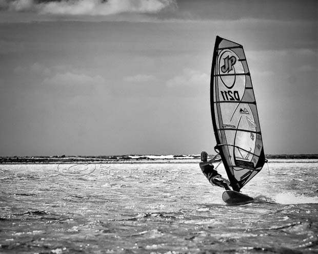 windsurfing, surfing, bonaire, summer