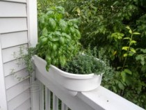 our herb planter