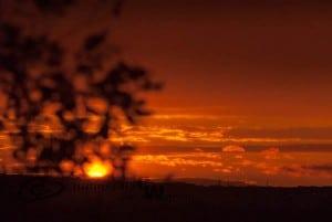 Sundown, Sandy Hook