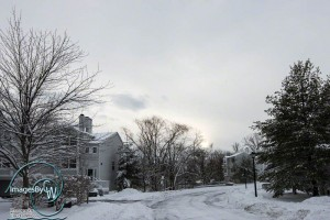 Winter in NJ: Oakridge Whippany