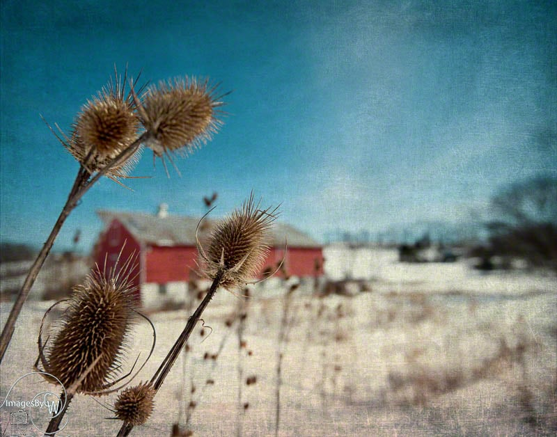 barn, red, winter, blue, sky, snow