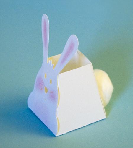 bunny box2