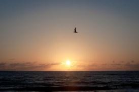 indialantic beach at sunrise, 3/17/12