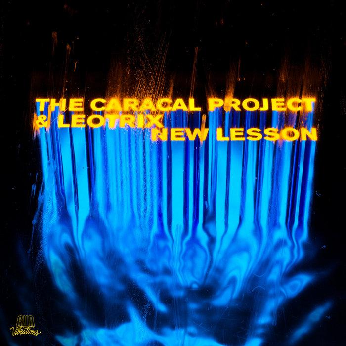 The Caracal Project & Leotrix - New Lesson - Gud Vibrations ile ilgili görsel sonucu