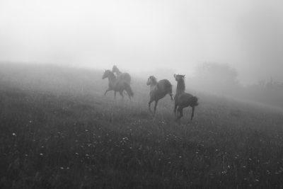 Ride to Black