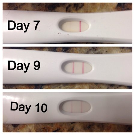 Are any of these postive first response ovulation tests ...