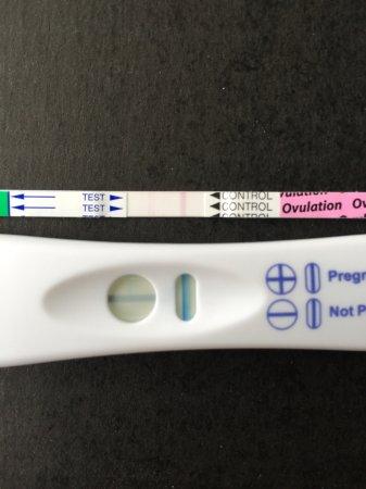 False positive PT & ovulation test? - BabyCenter