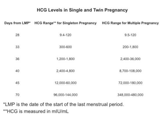 Average Twin Hcg Levels
