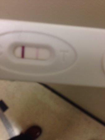 Veriquick Pregnancy Test Positive : veriquick, pregnancy, positive, Veriquick, Pregnancy, False, Positive