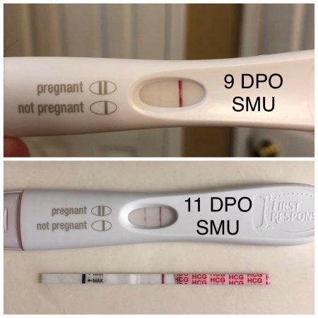 Post 10DPO FRER tests (BFP or BFN) - BabyCenter