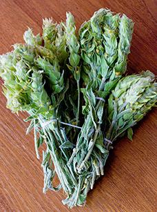 Мурсалски чай / Mursala tea