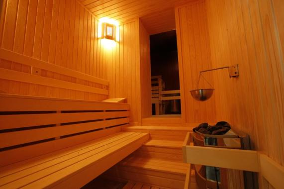 Sauna-Strimon-1