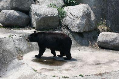 Sofia_Zoo зоопарк
