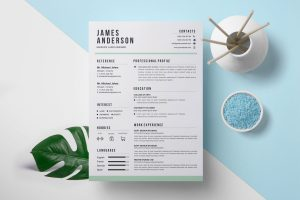 Contemporary Print Resume Templates