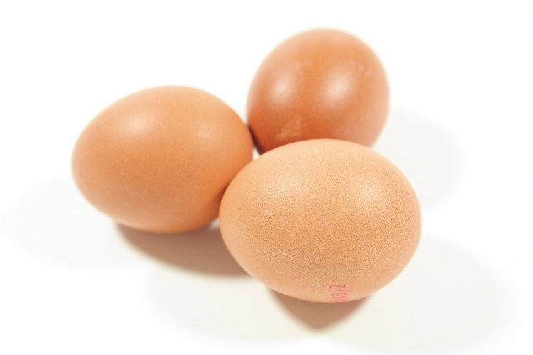 Three Brown Eggs Preview
