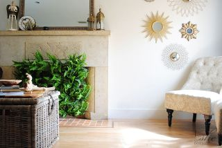 Fireplace plant facade