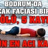 AylanKurdi_TweetDHA_det