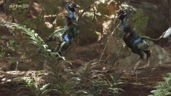 MDP_caudipteryx_parade