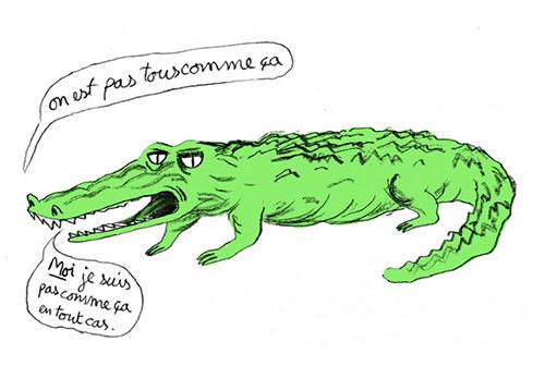 crocodile_notallmen
