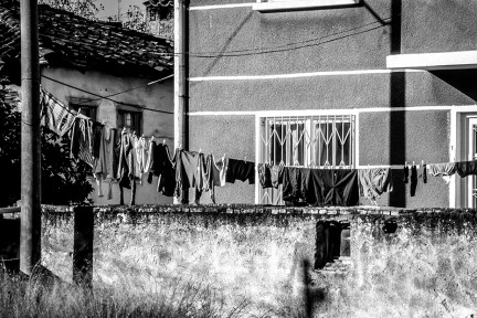 pr2002aabe0105 © Levent ŞEN