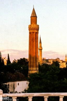 pr2006aacq0237 © LEVENT ŞEN