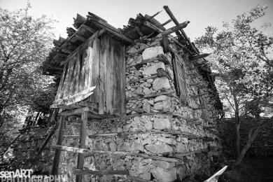 2016yds_sen5750-2 © LEVENT ŞEN