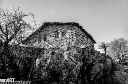 pr2016aaef_18© LEVENT ŞEN