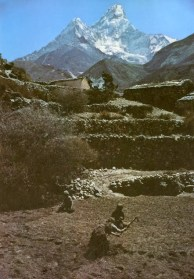 Daily life in the Himalayas (4)