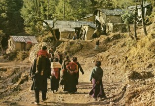 Daily life in the Himalayas (63)