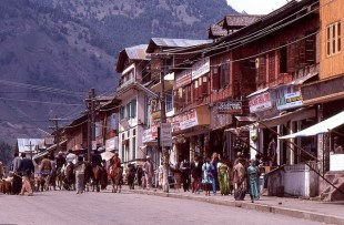 Daily Life in Vale of Kashmir, India, 1982 (15)