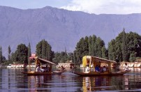 Daily Life in Vale of Kashmir, India, 1982 (25)