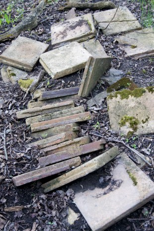 I think these are drainage tiles that farmers would bury in wetlands to dry them out. These have been dug up and are slowly reburying themselves!