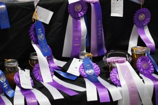 Ribbons overwhelm the winning jams and jellies
