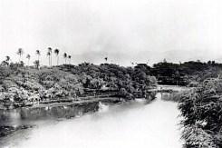 ʻApuakehau_Stream,(WC)_ca._1890
