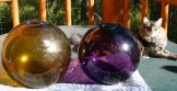 14-in diameter-honey amber color. The float on the right is purple about 12-in diameter
