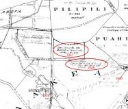1882-Manoa_Valley-Baldwin-(DAGS)-Reg1068-portion-zoom to 1920s Exec Orders