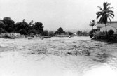 1952-Hilo-boats washed ashore along the Wailoa River during 1952 tsunami-Hilo