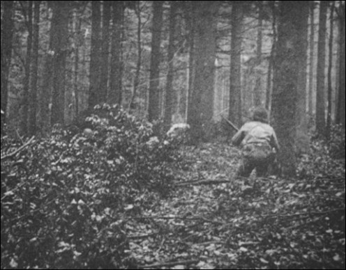 442nd taking part in rescuing the Lost Battalion