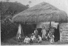 A Sugar Mill Shed