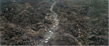 Ala_Loa-Trails