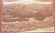 Andrews-UH-1950s graduation-EBay
