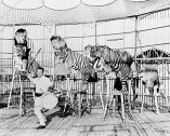 Clyde Beatty appeared with lions and tigers in the 1940s-(HnlAdv)