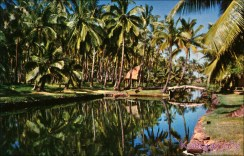 Coco-Palms_Lodge-became_Coco_Palms_Lagoon-(kamaaina56)-c1952