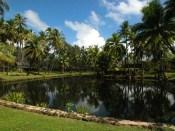 Coco_Palms-Lagoon