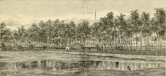 Cocoa-Nut_Grove,_and_Residence_of_the_Late_King_Kamehameha_V.,_at_Waikiki,_Oahu-before-1875