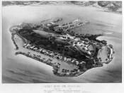 Coconut Island Club International