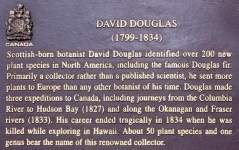 David Douglas sign-Cathedral Grove, MacMillan Park-Canada