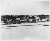 Dwellings probably along King St. near River St. and Nuuanu Stream-PP-38-3-017-1870