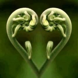 Fern-heart