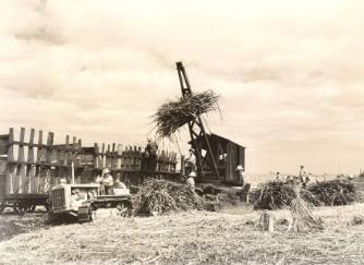 First sugarcane loader made at the Waiakea Sugar Mill in Hilo